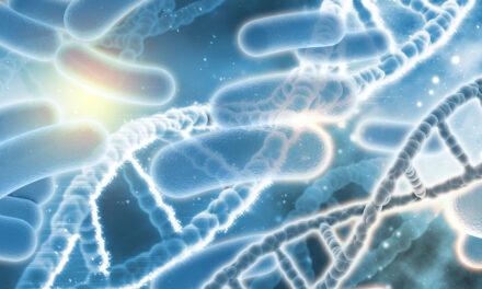 Una dintre marile probleme ale acestui secol ar putea fi rezolvată cu ajutorul ingineriei genetice